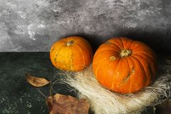 Ripe pumpkins on a green background. Copy space. Food background Stock Photo