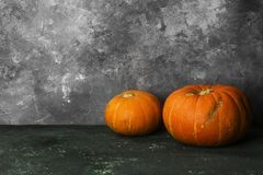 Ripe pumpkins on a green background. Copy space. Food background Royalty Free Stock Image