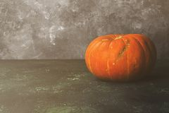 Ripe pumpkins on a green background. Copy space. Food background Royalty Free Stock Photos