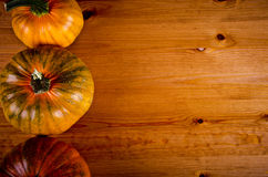 Ripe pumpkins for Halloween. Royalty Free Stock Images