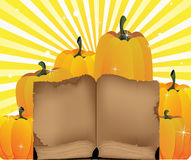 Ripe pumpkins and the old book Stock Image