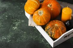 Ripe pumpkins, orange and black candle on a green background. Co Royalty Free Stock Images