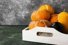 Ripe pumpkins, orange and black candle on a green background. Co Royalty Free Stock Photos