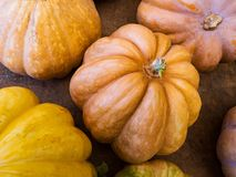 Ripe pumpkins on a rough wooden table. Ripe round pumpkins of red hues, a symbol of autumn and the holiday of Halloween Royalty Free Stock Image