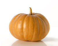 Ripe pumpkins Stock Images