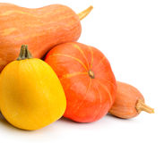 Ripe pumpkins  on white background Stock Photos