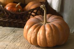Ripe pumpkins on a wooden background and in a basket. Rustic style, selective focus. Stock Photos