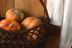 Ripe pumpkins on a wooden background and in a basket. Rustic style, selective focus. Royalty Free Stock Images