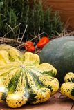 Ripe pumpkins, yellow, green striped and small orange autumn patissons with cherry tomatoes, dry grass on a wooden table backgroun stock photos
