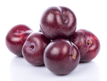 Ripe purple cherry plums Stock Photo