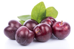 Ripe purple cherry plums Royalty Free Stock Images