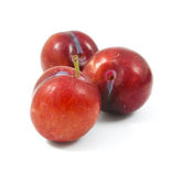 Ripe purple cherry plums isolated. On white Stock Photography