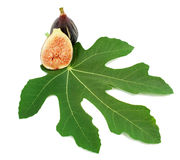 Ripe purple fig fruits  and leaf. On white background Royalty Free Stock Images