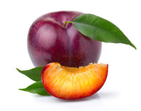 Ripe purple plum fruits with green leaves. On white background royalty free stock photos