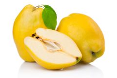 Ripe quince fruits with leaf and slice isolated Stock Photography