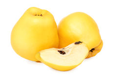 Ripe quince () Stock Photography