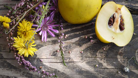 Ripe quinces and bunch of wild flowers on rough wooden table. Romantic theme with natural decor. Royalty Free Stock Photos