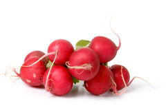 Ripe radish Royalty Free Stock Images
