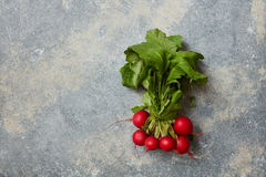Ripe radish with leaves Stock Image