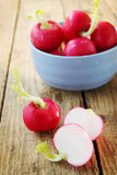 Ripe radishes in a blue bowl Royalty Free Stock Photography
