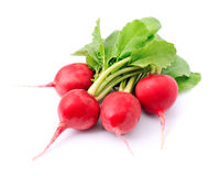 Ripe radishes Stock Photo