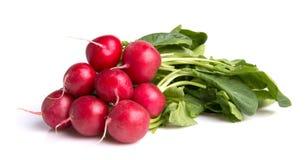 Ripe radishes Stock Photos