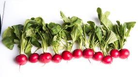 Ripe radishes Stock Photo