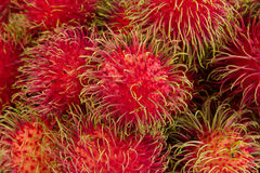 Ripe Rambutans fruit Close up Royalty Free Stock Images