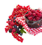 Ripe  of rasberry and other  berries Stock Images