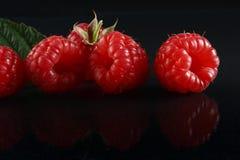Ripe raspberries. On black background Stock Images