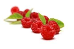 Ripe Raspberries Stock Image