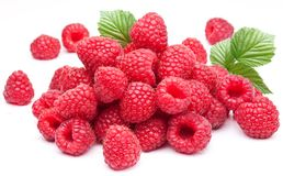 Ripe Raspberries. Stock Photo