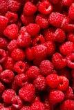 Ripe raspberries. Background of ripe, red raspberries Stock Images