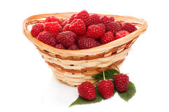 Ripe raspberries in basket with mint on white. Ripe raspberries in basket with mint isolated on white Royalty Free Stock Images