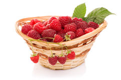 Ripe raspberries in basket with mint on white. Ripe raspberries in basket with mint isolated on white Royalty Free Stock Photo