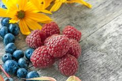 Ripe raspberries and blueberries with red beautiful autumn leaves. Close-up. copy space. The horizontal frame Stock Photo