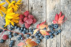 Ripe raspberries and blueberries with red beautiful autumn leaves. Close-up. copy space. The view from the top. The horizontal frame Stock Photo