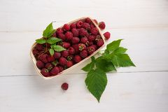 Ripe raspberries in box Royalty Free Stock Photos