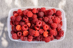 Ripe raspberries in a clear bowl Royalty Free Stock Photography