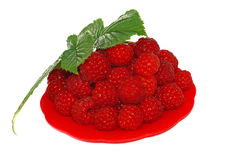 Ripe raspberries decorated with green leaf in a small platter royalty free stock image