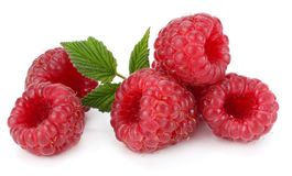 Ripe raspberries with green leaf isolated on white background Royalty Free Stock Images