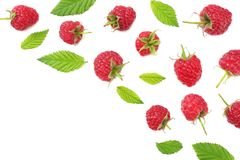 Ripe raspberries with green leaf isolated on white background. top view royalty free stock photography