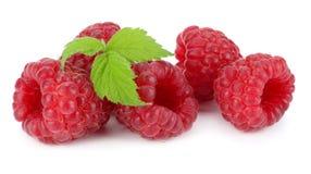 Ripe raspberries with green leaf  on white background macro Royalty Free Stock Photos