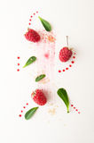 Ripe raspberries, green leaves and jam drops on a white backgrou Stock Photos