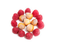 Ripe raspberries and hazelnuts on a white. Royalty Free Stock Photo