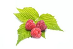 Ripe raspberries. Isolated on a white background Royalty Free Stock Photos