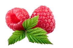 Ripe raspberries isolated on white background Royalty Free Stock Photography