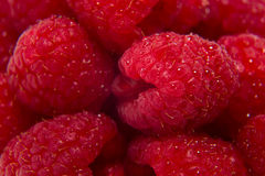 Ripe raspberries isolated. On white background close up Stock Photography