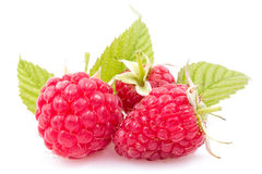 Ripe raspberries with leaves Stock Images