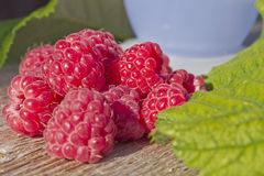 Ripe raspberries. A lot of beautiful ripe raspberries on the table Stock Images